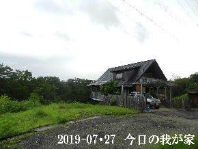 2019-07・27 今日の里山模様・・・ (1).JPG