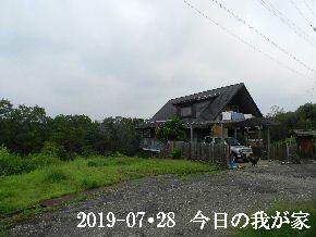 2019-07・28 今日の里山模様・・・ (1).JPG