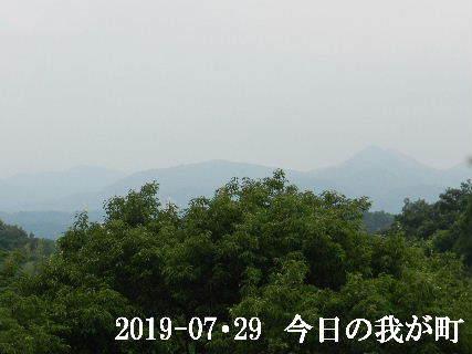 2019-07・29 今日の我が町.JPG