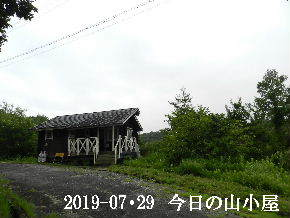 2019-07・29 今日の里山模様・・・ (2).JPG