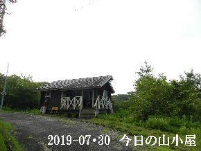 2019-07・30 今日の里山模様・・・ (2).JPG