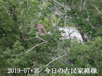 2019-07・31 今日の古民家模様.JPG