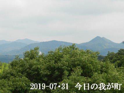 2019-07・31 今日の我が町.JPG