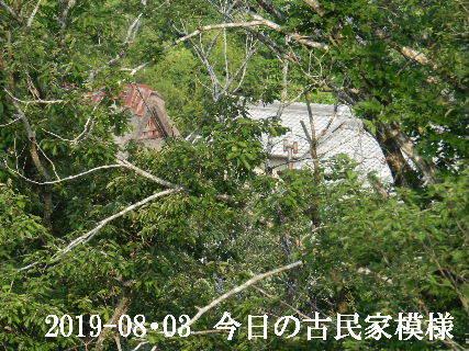 2019-08・03 今日の古民家模様.JPG