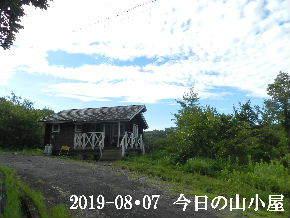 2019-08・07 今日の里山模様・・・ (2).JPG