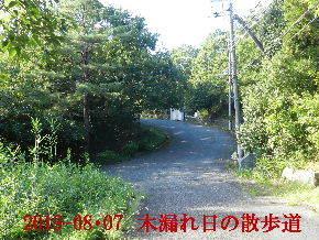 2019-08・07 今日の里山模様・・・ (8).JPG