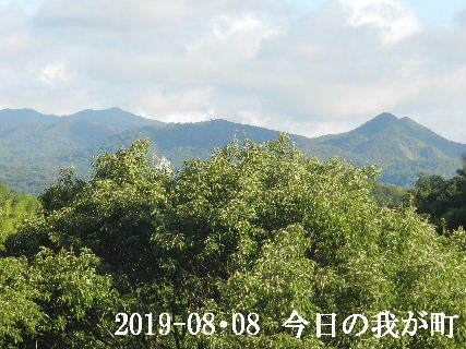 2019-08・08 今日の我が町.JPG