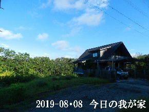 2019-08・08 今日の里山模様・・・ (1).JPG