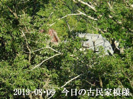 2019-08・09 今日の古民家模様.JPG