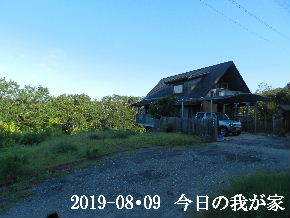 2019-08・09 今日の里山模様・・・ (1).JPG