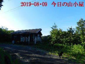 2019-08・09 今日の里山模様・・・ (2).JPG
