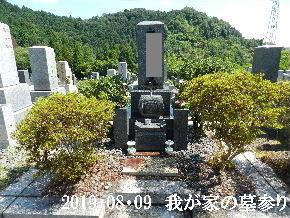 2019-08・09 我が家のスナップ・・・ (2).JPG