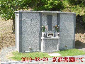 2019-08・09 我が家の墓地公園で (4).JPG