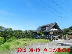 2019-08・10 今日の里山模様・・・ (1).JPG