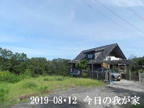 2019-08・12 今日の里山模様・・・ (1).JPG