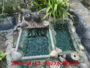 2019-08・12 我が家のスナップ・・・ (4).JPG