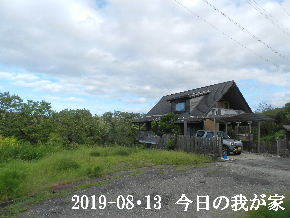 2019-08・13 今日の里山模様・・・ (1).JPG