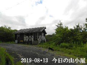 2019-08・13 今日の里山模様・・・ (2).JPG