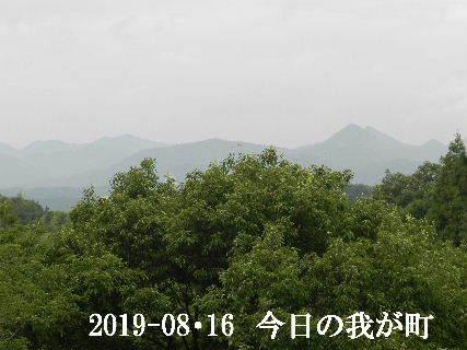 2019-08・16 今日の我が町.JPG