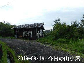 2019-08・16 今日の里山模様・・・ (2).JPG
