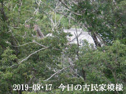 2019-08・17 今日の古民家模様.JPG