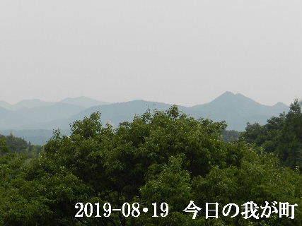 2019-08・19 今日の我が町.JPG
