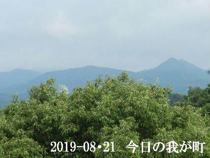 2019-08・21 今日の我が町.JPG