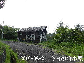 2019-08・21 今日の里山模様・・・ (2).JPG