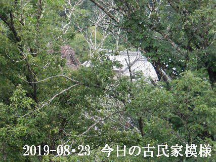 2019-08・23 今日の古民家模様.JPG