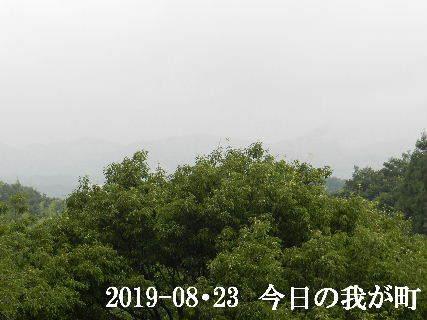 2019-08・23 今日の我が町.JPG