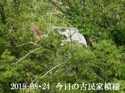 2019-08・24 今日の古民家模様.JPG