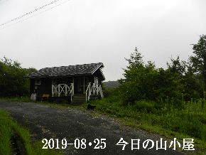2019-08・25 今日の里山模様・・・ (2).JPG