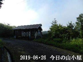 2019-08・26 今日の里山模様・・・ (2).JPG