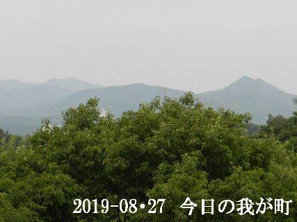 2019-08・27 今日の我が町.JPG