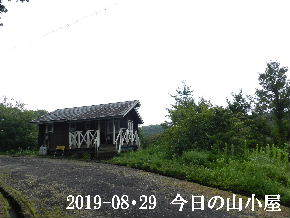 2019-08・29 今日の里山模様・・・ (2).JPG