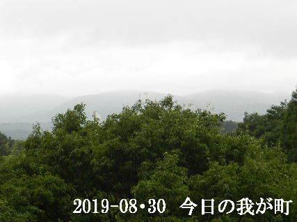 2019-08・30 今日の我が町.JPG