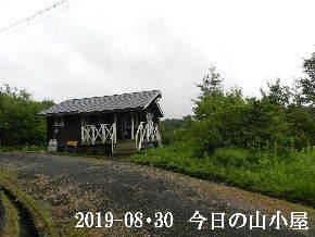 2019-08・30 今日の里山模様・・・ (2).JPG