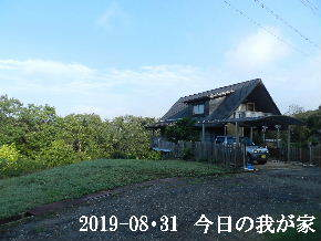 2019-08・31 今日の里山模様・・・ (1).JPG