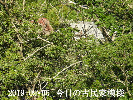 2019-09・06 今日の古民家模様.JPG