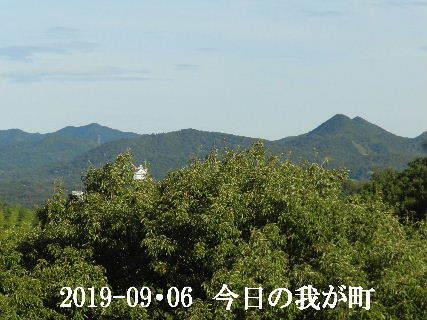 2019-09・06 今日の我が町.JPG