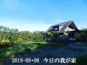 2019-09・06 今日の里山模様・・・ (1).JPG