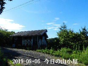 2019-09・06 今日の里山模様・・・ (2).JPG