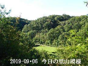 2019-09・06 今日の里山模様・・・ (4).JPG
