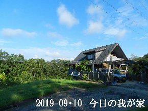 2019-09・10 今日の里山模様・・・ (1).JPG