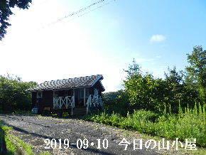 2019-09・10 今日の里山模様・・・ (2).JPG