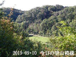 2019-09・10 今日の里山模様・・・ (4).JPG