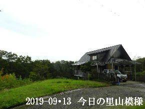 2019-09・13 今日の里山模様・・・ (1).JPG