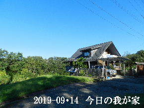 2019-09・14 今日の里山模様・・・ (1).JPG