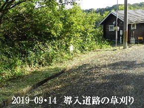 2019-09・14 我が家のスナップ・・・ (1).JPG