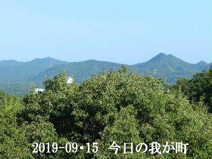 2019-09・15 今日の我が町.JPG